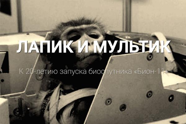 лапик_мультик