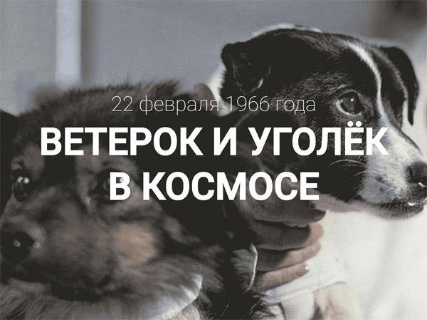 ветерок_уголек